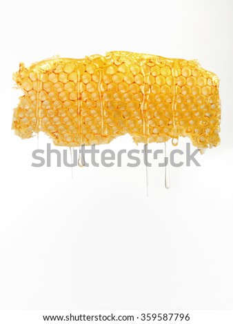 Natural honey dripping from honeycomb - stock photo
