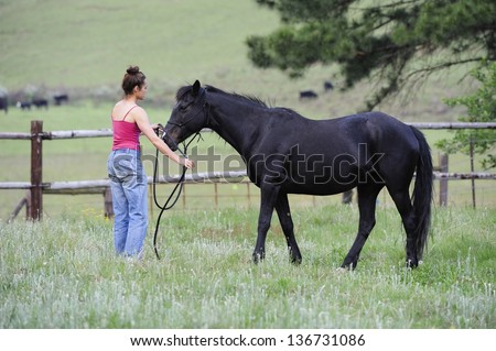 Natural Horsemanship.  Quiet Communication.  Horse trainer working with horse in paddock, Himeville, kwazulu Natal, South Africa
