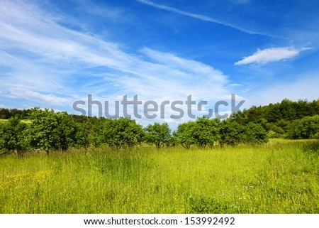 Natural landscape - stock photo