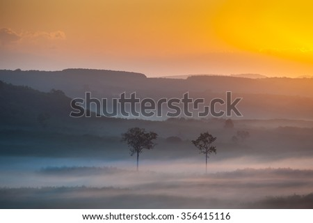 Natural landscape at dawn on a misty and clouded soft diffuse light beautifully.