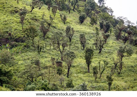 Natural Landscape in Chin Mountains, Myanmar (Burma) - stock photo