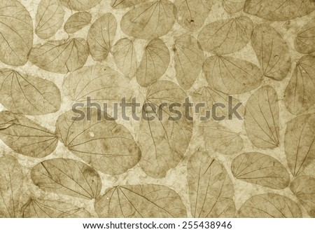 Natural leaves paper texture background vintage