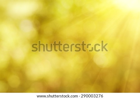Natural outdoors bokeh  in golden autumn tones, seasonal abstract blurred sunny background - stock photo