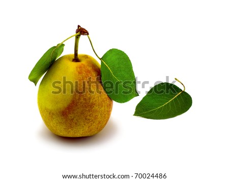 Natural ripe pear and three leafs , isolated on white background.