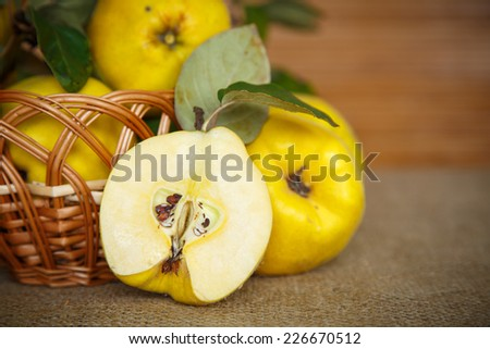 Natural ripe quince on a dark wooden background - stock photo