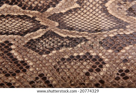 Natural skin of a python 2 - stock photo