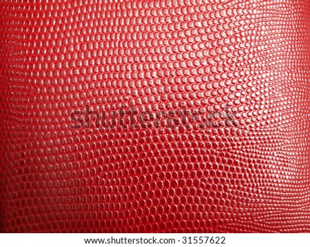 natural snake texture - stock photo