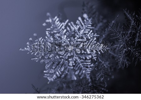 Natural snowflake crystal on dark background - stock photo