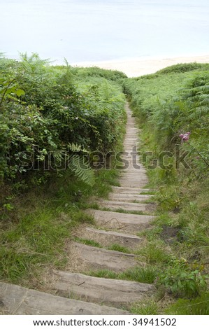 Natural stairway - stock photo