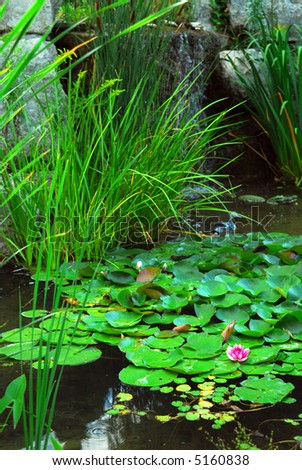 Natural stone landscaping stock images royalty free for Natural pond plants