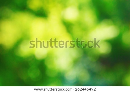 Natural tree park blur - stock photo