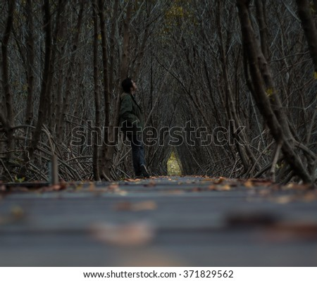 Natural tunnel of love formed by trees - stock photo