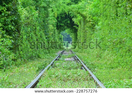 Natural tunnel of love formed by trees in khanjanaburi thailand. - stock photo