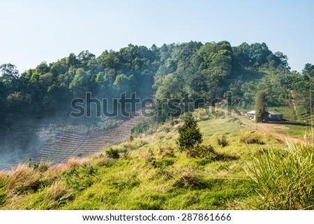 Natural view at Chiangmai province, Thailand. - stock photo