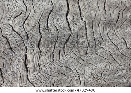 natural weathered wood eucalyptus wood plank - stock photo