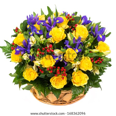 Natural yellow roses and blue irises in a basket isolated on white background - stock photo