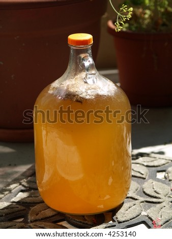 naturally fermented juice - stock photo