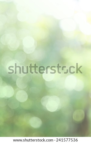 Nature abstract bokeh background - shiny and bright