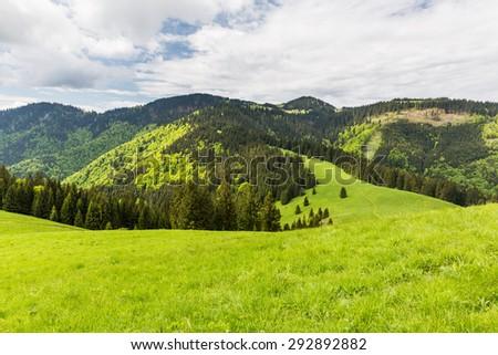 Nature along the cycling way from Malino Brdo to Revuce, Slovakia 2015 - stock photo