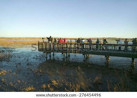 Nature and bird photographers photograph birds at sunrise from deck on lake at Bosque del Apache National Wildlife Refuge, near San Antonio and Socorro, New Mexico - stock photo