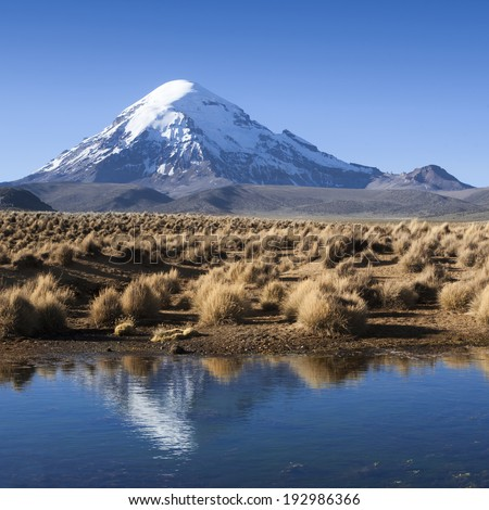 Nature and landscapes of mountain Bolivia. Saline soils, stony deserts, salty lakes, volcanoes and deep blue sky. - stock photo