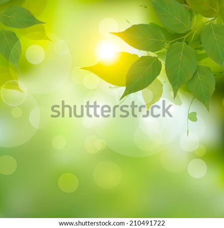 Nature background with green spring leaves.  - stock photo
