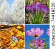 nature collage in square shape with  four seasons of the year - stock photo