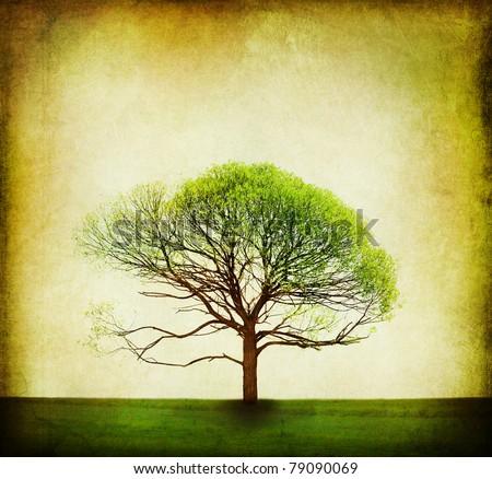 Nature Design.Vintage Tree Background - stock photo
