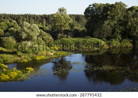 Nature. Forest and river. - stock photo