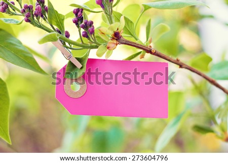 nature greeting card background - stock photo
