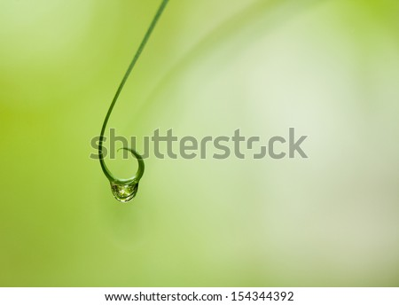 Nature in a Raindrop Background with space for text - stock photo