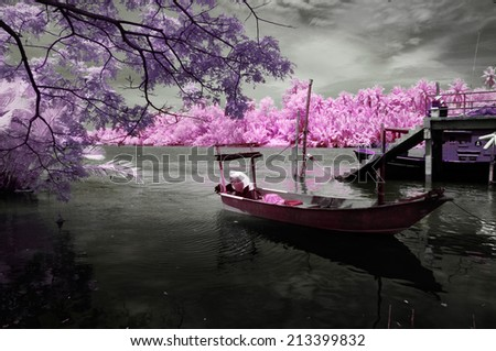 Nature in Infrared - stock photo