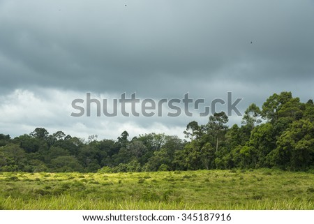 nature landscape view of Khao Yai National Park, Thailand - stock photo