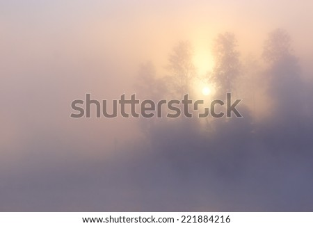 Nature morning misty foggy sunrise summer scene: sun, forest and trees visible through fog (mist) with a blur pattern of cloudy sky. Can be used as a background (backdrop) or a wallpaper.  - stock photo