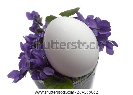 nature,object,egg,violets - stock photo