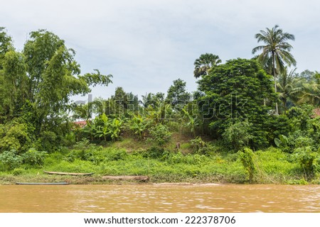 Nature of the Mekong river , green jungle, in Asia
