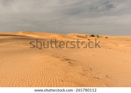 Nature of the Sahara desert in Senegal, Africa