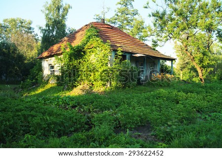 Haga crecer su propia casa de Martin Púrpura