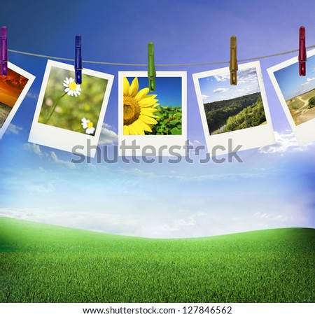 Nature Photo with field of green fresh grass under blue sky - stock photo