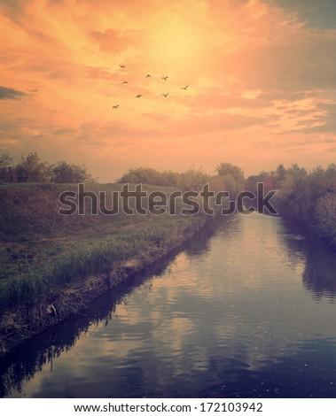 Nature scene - stock photo