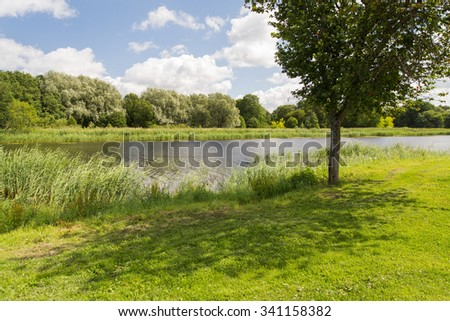 nature, season, landscape and environment concept - summer field and trees - stock photo