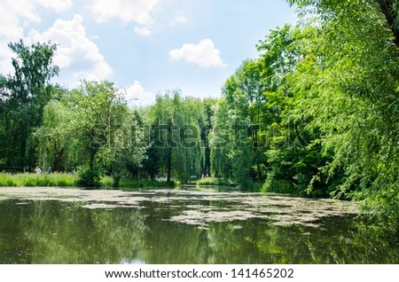 Nature summer. River with blue sky