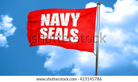 navy seals, 3D rendering, a red waving flag - stock photo