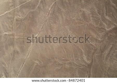 Nazca lines, Peru - Monkey - stock photo
