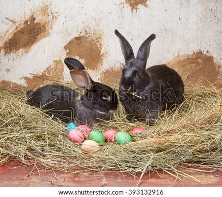 Near colored eggs in the hay are Easter bunnies