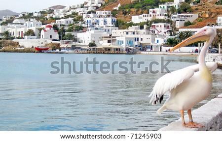 near the sea Little Venice island of Mykonos - stock photo