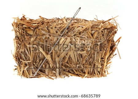 Needle in a hay bale in front of white background
