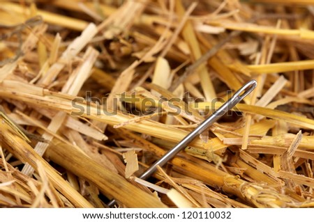 Needle in a haystack close-up - stock photo