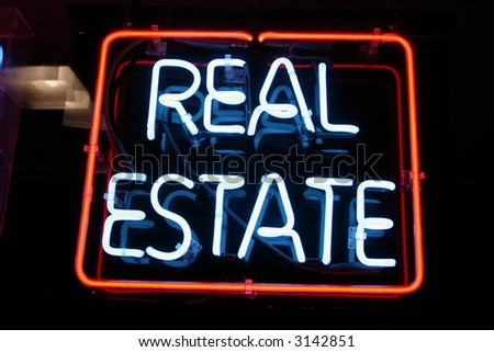 "Neon Sign series  ""real estate"""