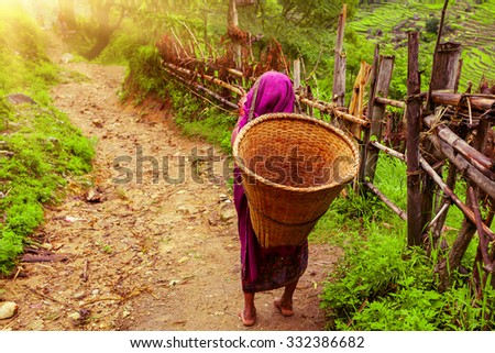Nepalese woman with Wicker Basket on rural road in Nepal, Annapurna trekking - stock photo